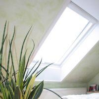 Fenster1_1
